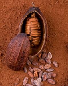 Kakaové maslo ajeho pôvod