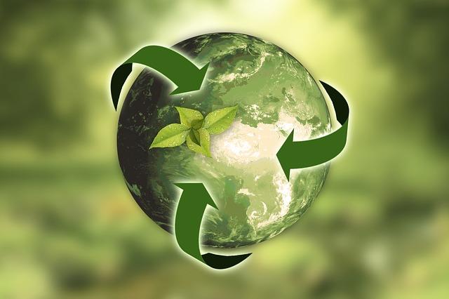 Čo je OZV (organizácia zodpovednosti výrobcov) a RZV (rozšírená zodpovednosť výrobcov)?